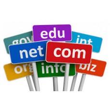 Domain (1 Year)